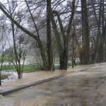 Überschwemmung Frühling 2006