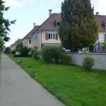 Freidorf18